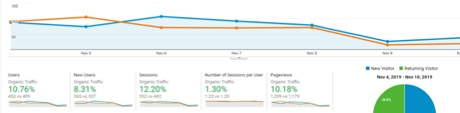 Organic traffic snapshot of a corporate training client potentially impacted by a recent Algorithm Update in November.