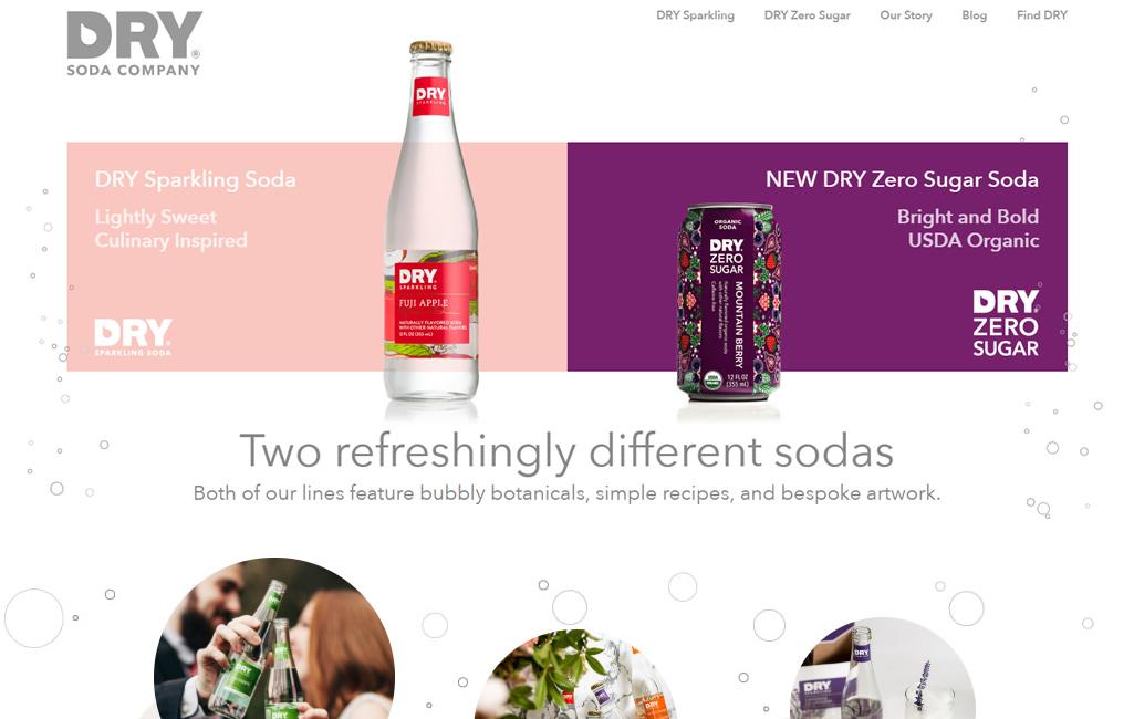 Dry Soda Portfolio Example