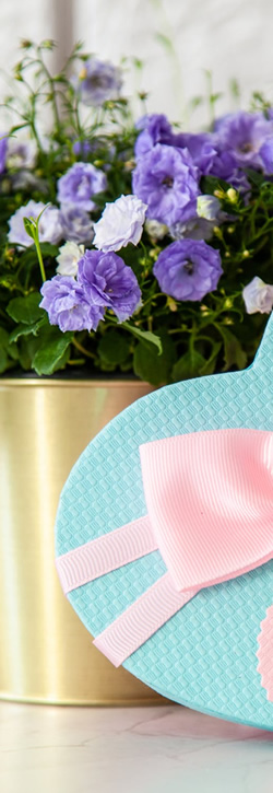 Gourmet Gift Baskets ENDURANCE Portfolio Example